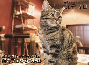 猫カフェからの脱出v.jpg