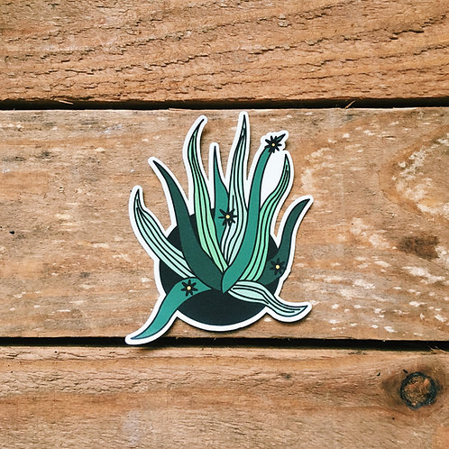 mexican agave plant sticker
