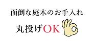 img_main_cap.png