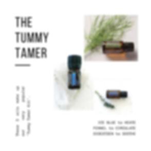 tummy tamer pg1.png