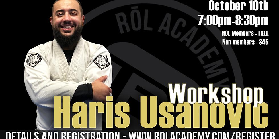 Haris Usanovic Workshop