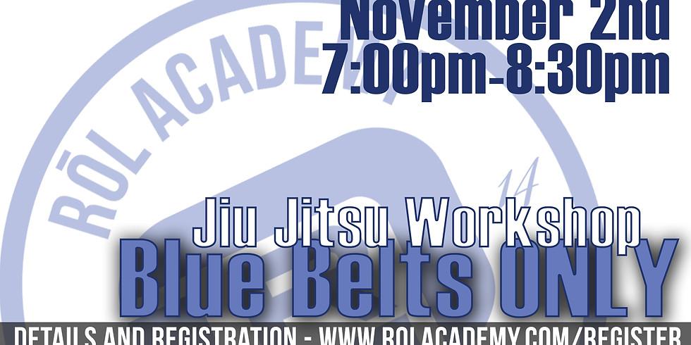 Blue Belt Workshop (1)