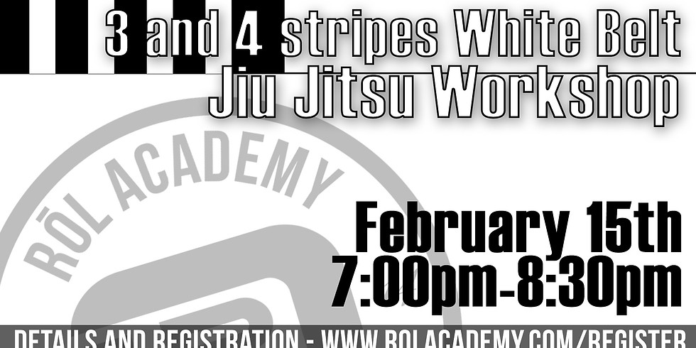 3 and 4 Stripe White Belt Workshop