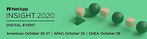netapp insight logo.png