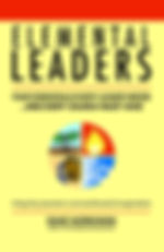 Elemental Leaders front cover LO RES.jpg