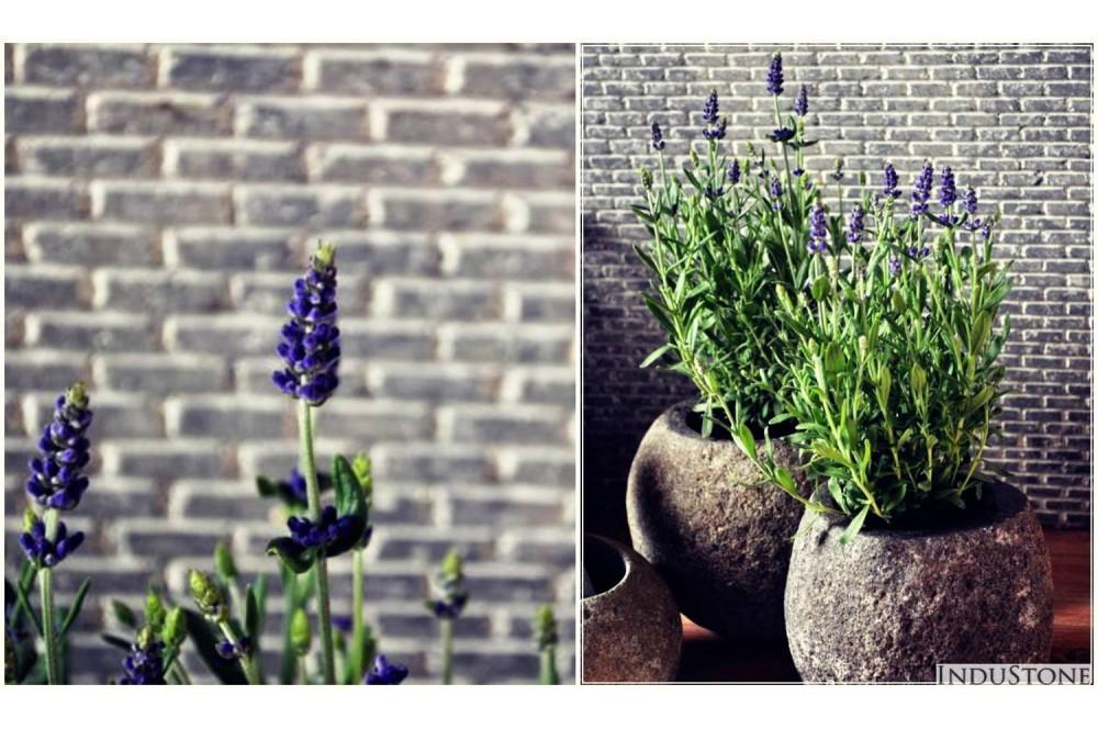 Stein Vase Blumentopf