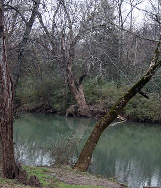 Peace Along the River