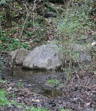 Rocks in Wonderland