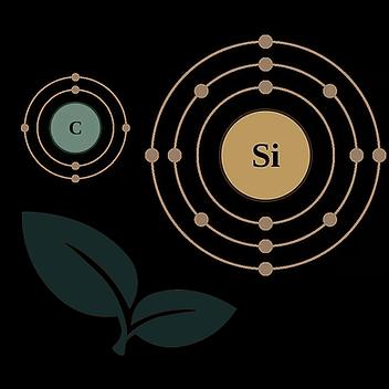 Petkowski Silica School Lecture Logo 4.p
