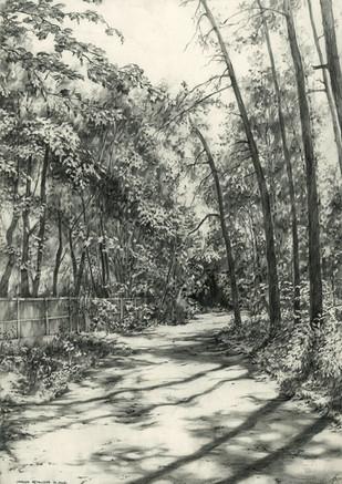 Droga w Przewięzi