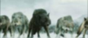 Wolf Pack 1.jpg