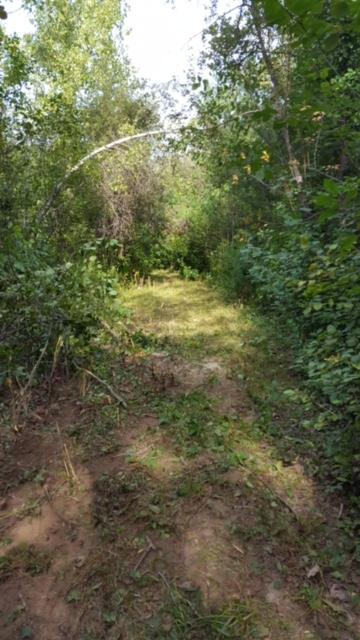 Hammer Trail