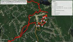 Calitri Harris Moose map