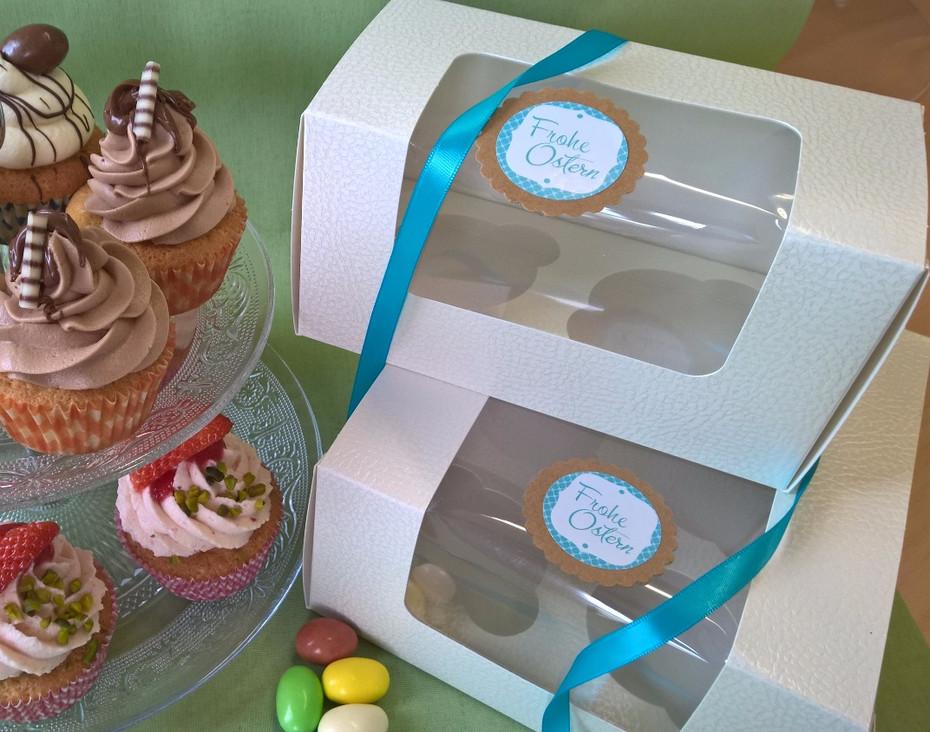 Oster Cupcake Box