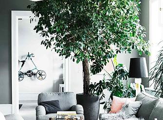 renovering af lejlighed, Cool lys nordisk bolig