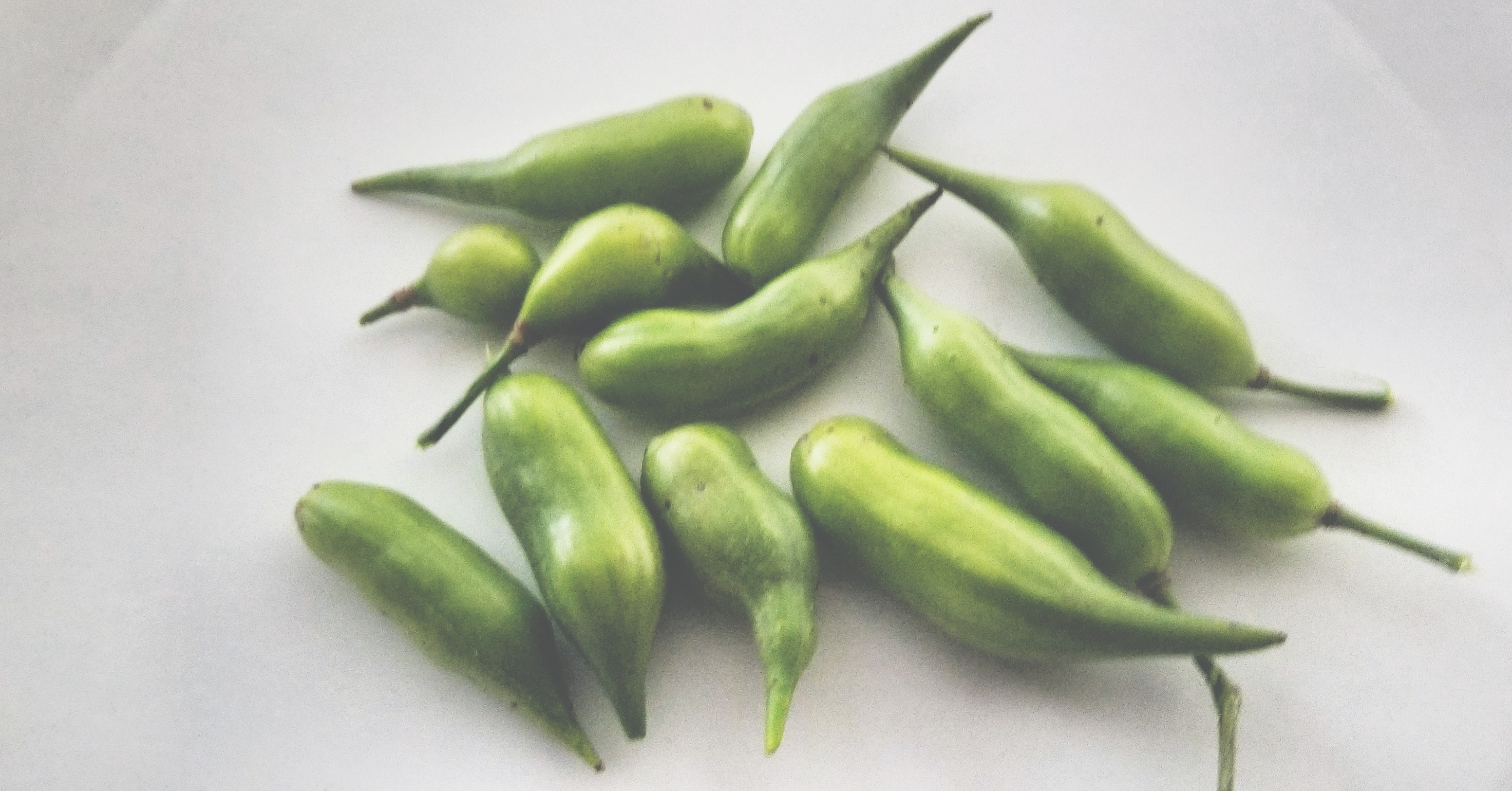 radish seedpods