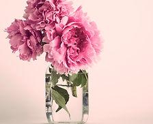 FLOWER: TUILIP