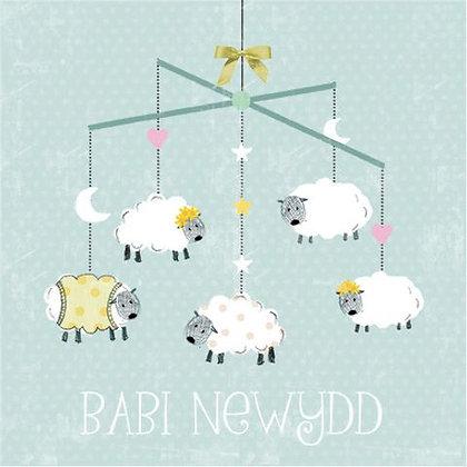 Babi Newydd/ New Baby