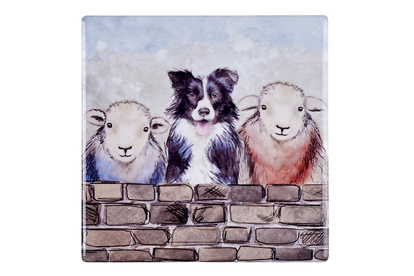 Sheep and Sheepdog Set of 4 coasters