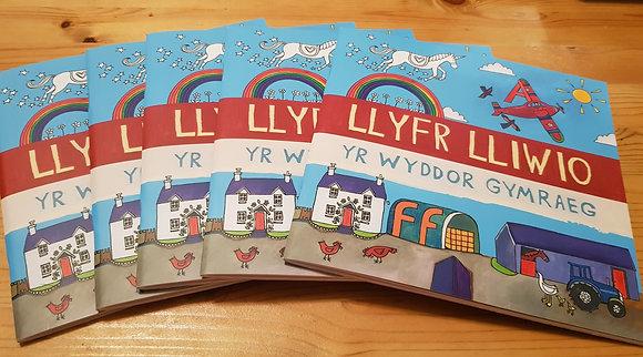 Lizzie Spikes Driftwood designs Llyfr Lliwio/Colouring book