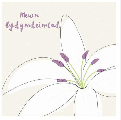 Carden Cydymdeimlad/Sympathy Card
