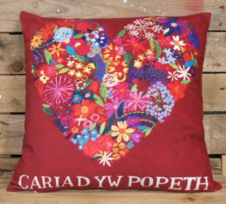 Driftwood Designs - Cariad yw Popeth (Love is Everything) Velvet Cushion Cover