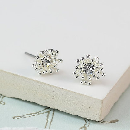 Silver plated crystal  earrings with tiny bead cluster