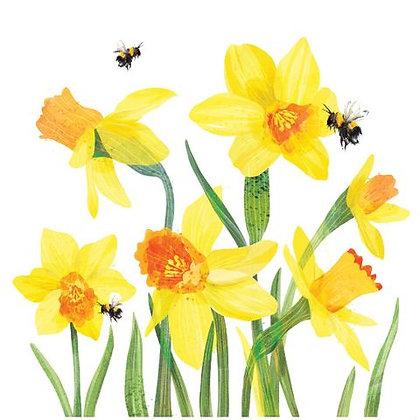 Carden Cennin Pedr/ Daffodil Card