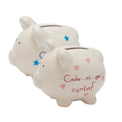 Cadw Mi Gei Cyntaf/My First Money Box