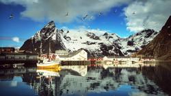 Norway_Lofoten_Mountains_Houses_Marinas_Gull_512780_2560x1440