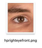 WEBSITEFINDERPNGS_0104_Layer-110.png