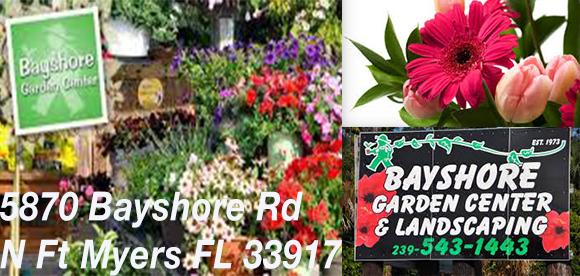 Bayshore Garden Center Ad2 ADO.jpg