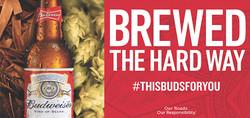 Bud Brewed the Hard Way ADO.jpg