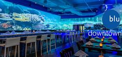 Blu DT fish wall ad ADO r1