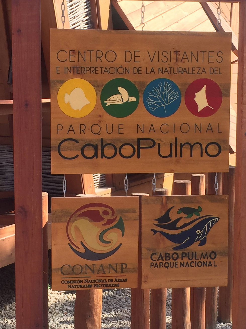 Cabo Pulmo Museum