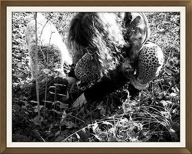Séance de cavage ou récolte de Truffe