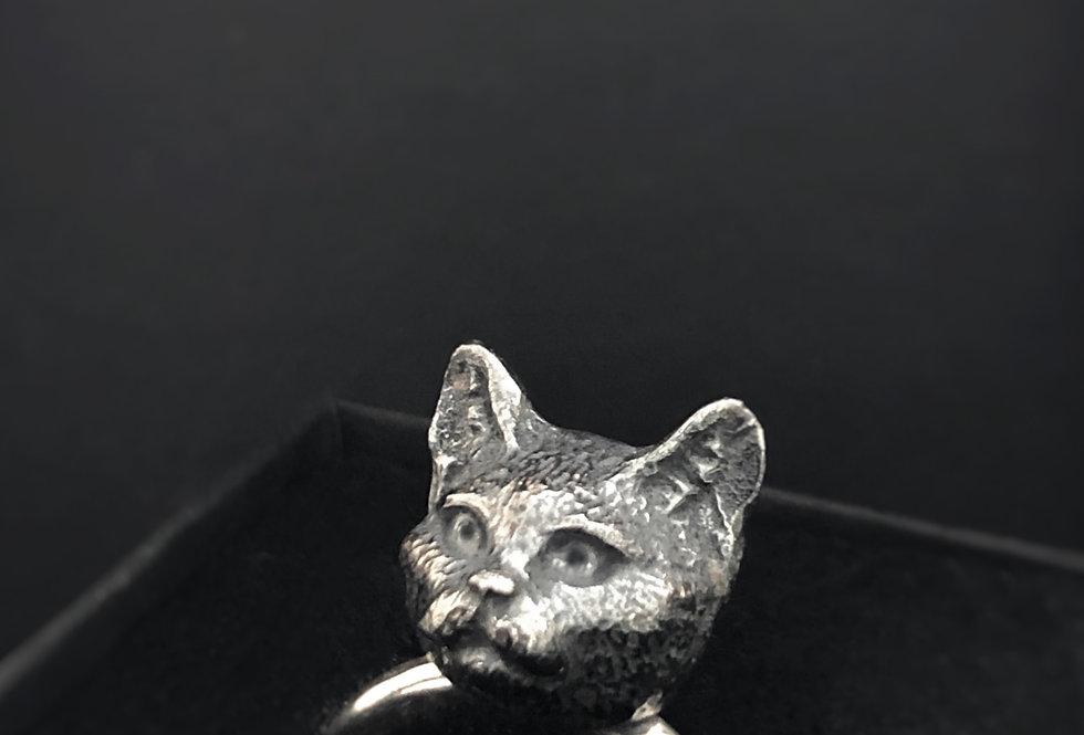 Felis, ring