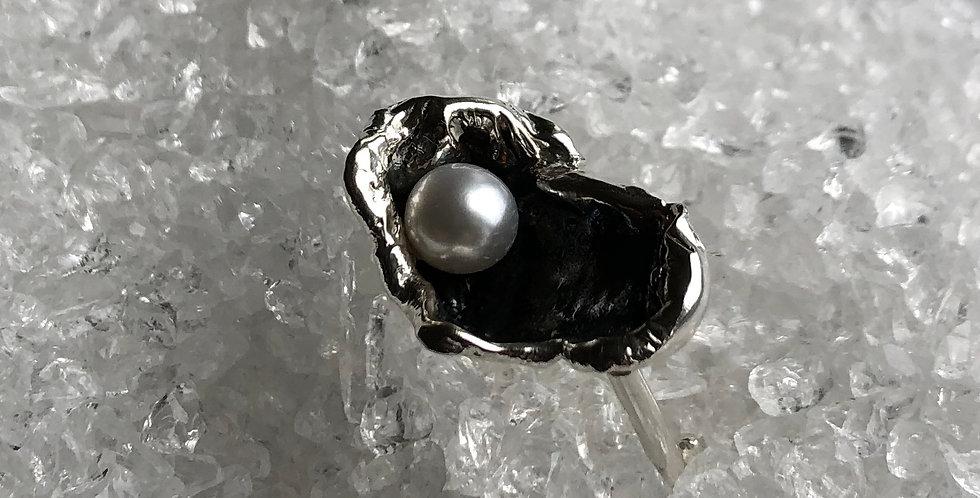 Ostrea 2, ring