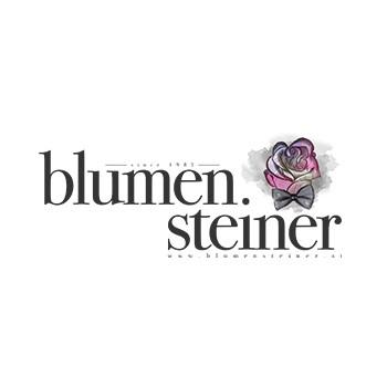 Punktum_Referenz_Steiner.jpg
