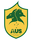 AFA NATIONAL TEAM LOGO.png