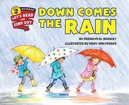 Down Comes the Rain.jpg