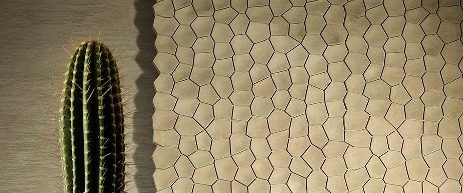 3D Surface Arido