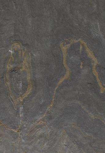 fading-desert-detail-0061-1024x1497.jpg