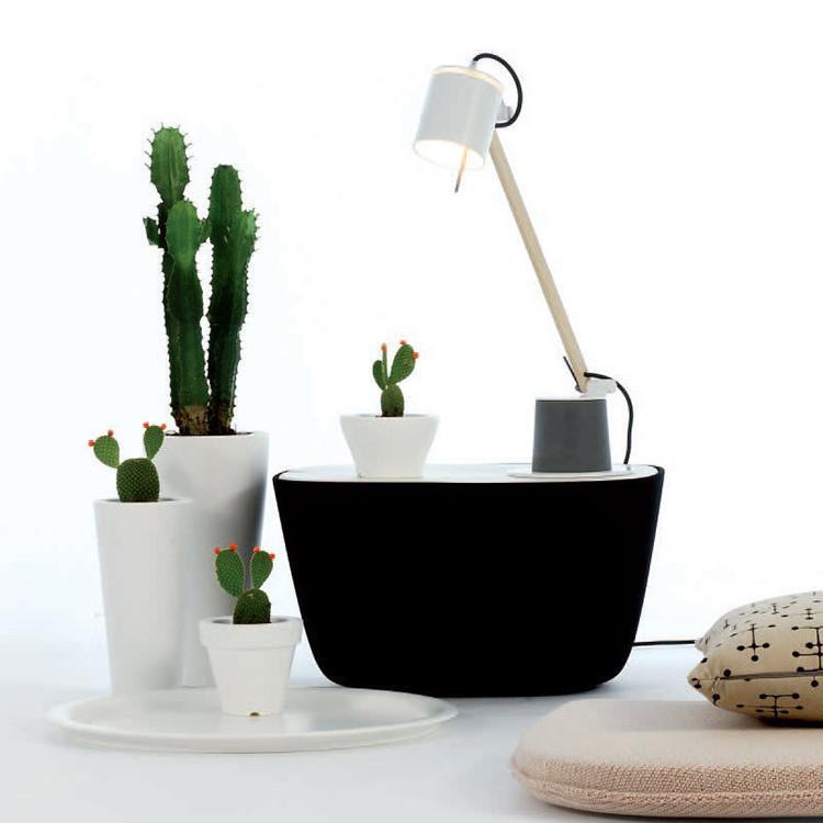 Fambuena Plume Desk Lamp