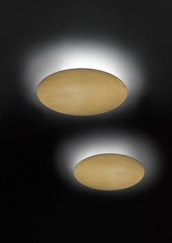 Fambuena Hoop Wall / Ceiling Light