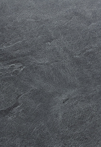soaring-moss-detail-0092-1024x1497.jpg