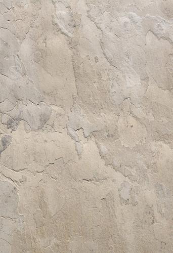 foggy-dust-detail-0103-1024x1497.jpg