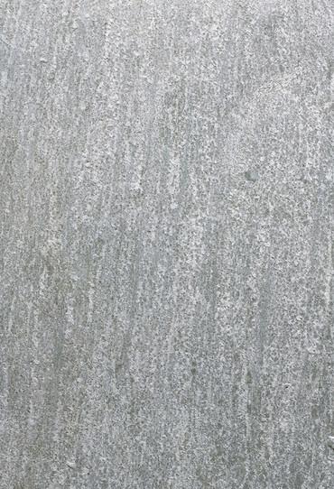 silent-spring-detail-0036-1024x1497.jpg