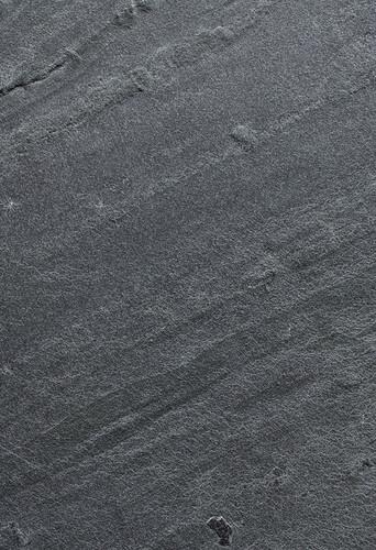 soaring-moss-detail-0093-1024x1497.jpg