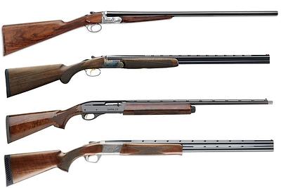 shotguns.jpg